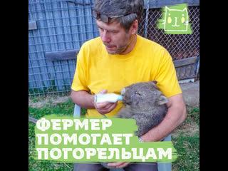 Русский фермер помогает австралийским животным