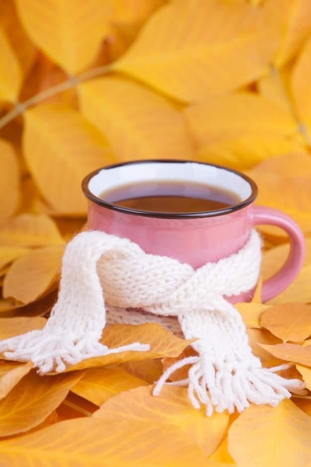 Осенью хорошо просыпаться рано. Когда еще влажно-туманно, и в молочном сумраке т...