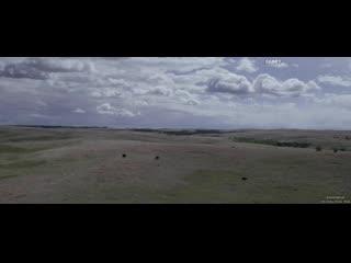 Лиллиан / Lillian (2019) Режиссер: Андреас Хорват