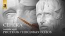 Голова Сенеки - Рисунок гипсовых голов | Художник Денис Чернов ~ Онлайн-школа Akademika