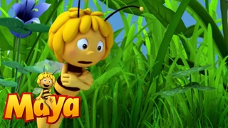 Sulky Willy - Maya the Bee - Episode 51