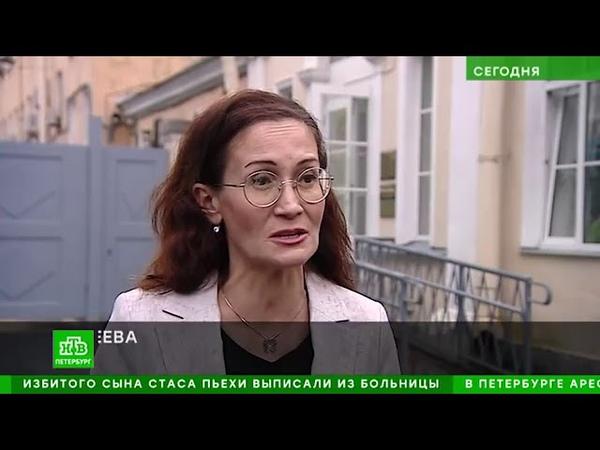 НТВ Экологи и зоозащитники призывают власти Петербурга не строить новый дельфинарий