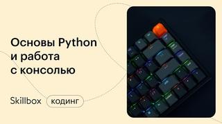 Как быстро выучить Python и начать программировать? Интенсив по Python