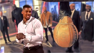 When Boxers DESTROYED the Punch Machine! (2019)