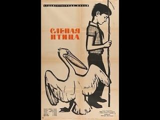 СЛЕПАЯ ПТИЦА. Реж. Борис Долин. 1963. Детский фильм