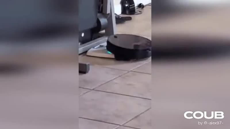 The vacuum cleaner has a passion for floor scales