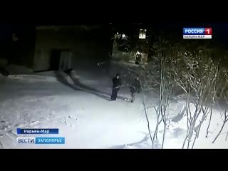 Россия-1 Нарьян-Мар HD Несовершеннолетние вандалы_ неизвестные вырвали кнопки дл