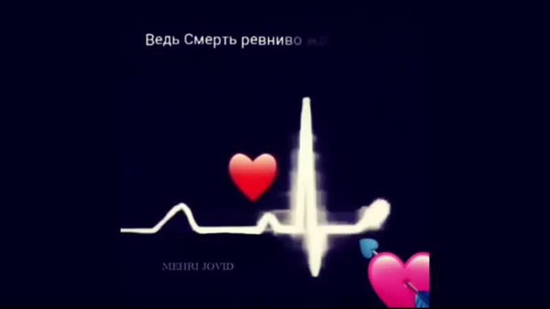 Instagram post by Bahrom_Hudoev_B5w3X4_KOt(MP4).mp4