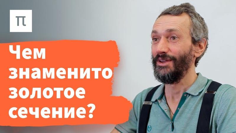 Золотое сечение Алексей Савватеев ПостНаука