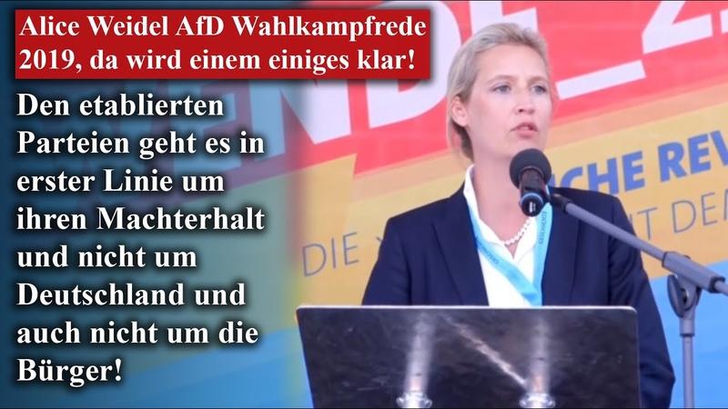 Alice Weidel AfD Wahlkampfrede 2019 da wird einem einiges klar