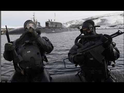 Морские котики Балтийского Флота
