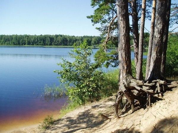 ногой, святое озеро нижегородская область фото всегда освоение участка
