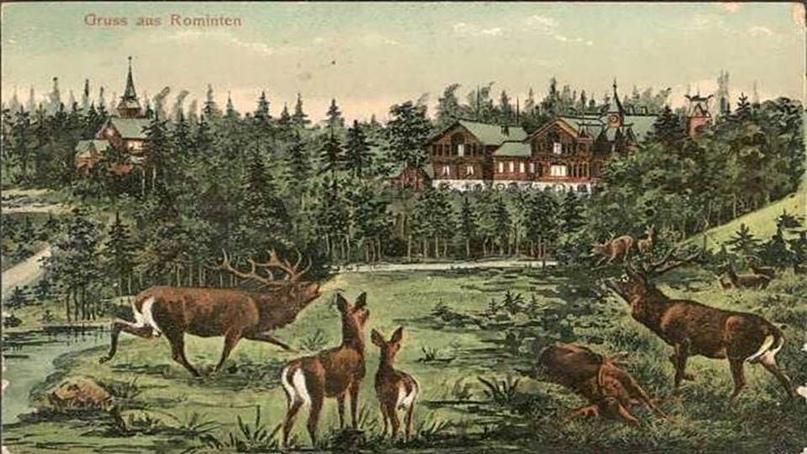 Лосиная история, изображение №6