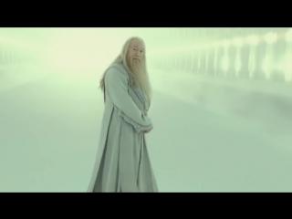 Гарри Поттер и Новый год (Переозвучка) The Nafig