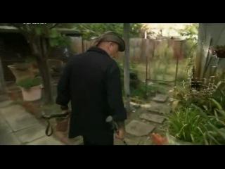 Спасатель змей Дьяволы в беде 12 серия