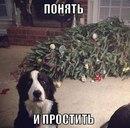 Фотоальбом человека Татьяны Комаровой
