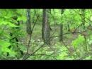 Adam Lambert - What R U want from me (Dutov cover)
