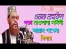 Allah Paker Didar Bangla Waaz Mahfil Islamic Talk Waz ft Allama Delwar Hossain Sayeedi