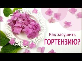 ЮВЕЛИРНАЯ СМОЛА || Гортензия || Как засушить цветы? How to dry a hydrangea?