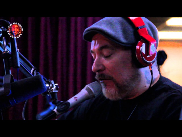 Everlast - Put Your Lights On (from Joe Rogan Experience 363)