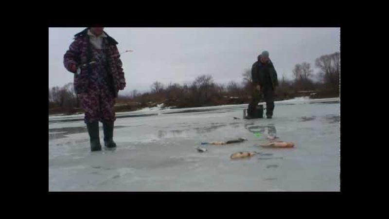 Супер рыбалка Ловля на течении зимой шарик дергуша
