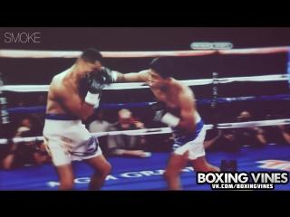 Roman El Chocolatito Gonzalez l Boxing Vines l SmoKe