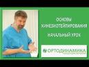 Основы кинезиотейпирования Начальный урок