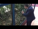 Koksal Baba Коксал Баба кривляется в зоопарке