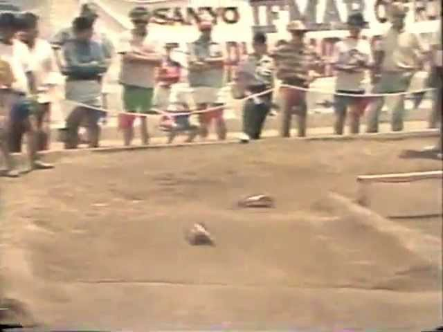 1985 IFMAR Off Road World Championship Open A main A2