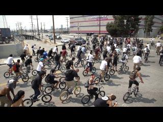 MASSIVE BMX STREET SWARM