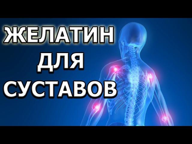 Желатин для лечения суставов 2 способа приема tkfnby lkz ktxtybz cecnfdjd 2 cgjcj,f ghbtvf