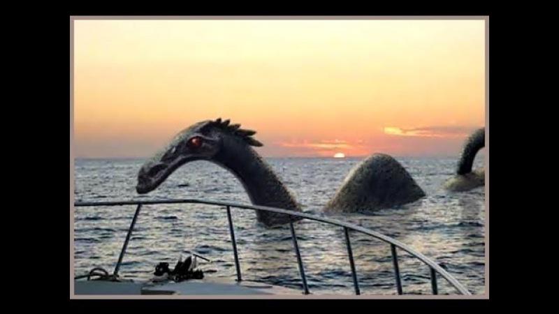 одиночестве карадагский змей фото ошибёмся