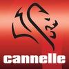 Рыболовные крючки Cannelle