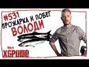 This is Хорошо - Прожарка и побег Володи 531