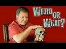 Discovery Вот это странно Загадки медицины 2012