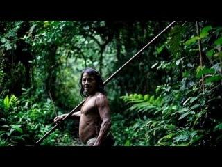 The Blowgun Warriors Of The Amazon Tales Of The Huaorani Tribe