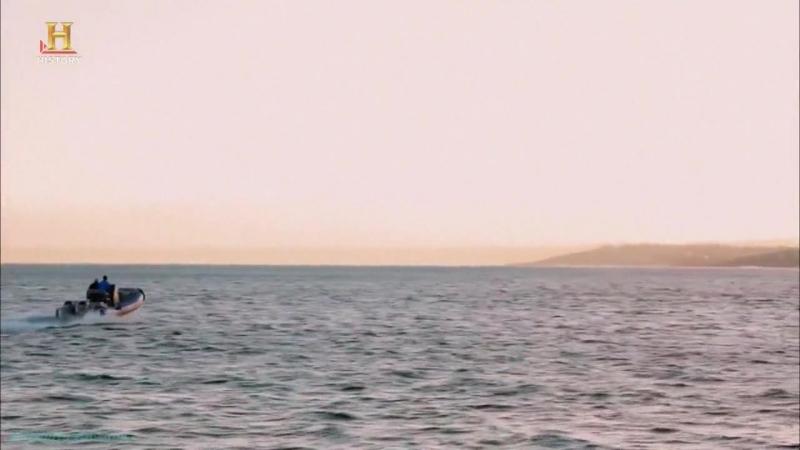 History «Акульи пастухи (06). Аллея акул» (Реальное ТВ, 2012)