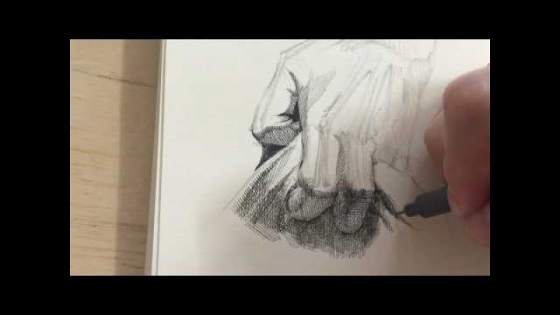 Pen drawing crosshatching hand 1 2