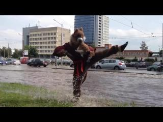 Крыса-мутант мастер Сплинтер выбежала на поверхность в Минске из-за подтоплений после шторма [720p]
