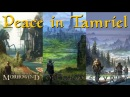 The Elder Scrolls 'Peace in Tamriel'
