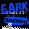 GARK STORM - NEW DOWNHILL FORK
