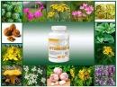 Безопасный Артемизин М избавит от паразитов без побочных эффектов
