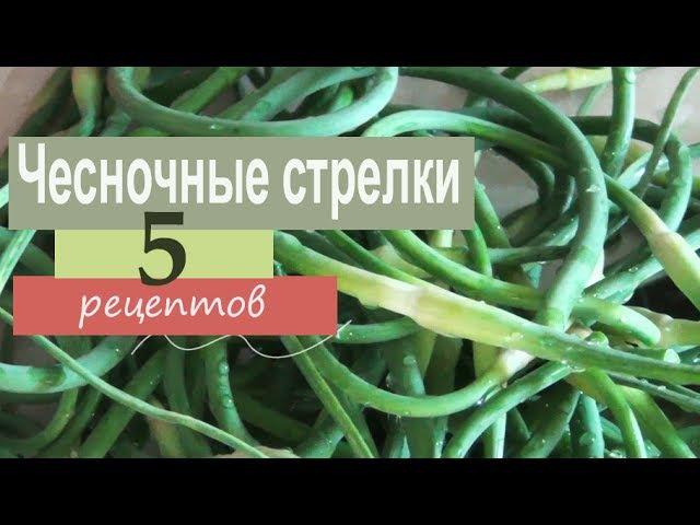 Чесночные стрелки 5 рецептов приготовления заготовки на зиму гарнир масло с яйцом