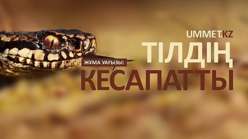 Тілдің кесапаты Алау Әділбаев
