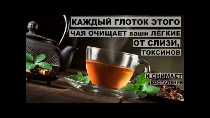 Каждый глоток этого чая очищает ваши легкие от слизи,токсинов и снимает воспале ...