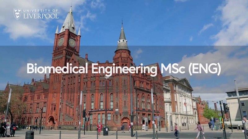 Biomedical Engineering MSc (Eng)