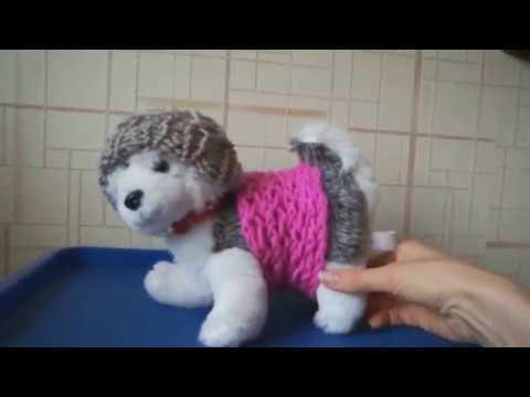 Вяжем одежду для собачки и для себя