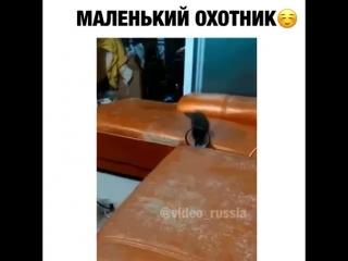 Video by Elnur Memmedrzayev