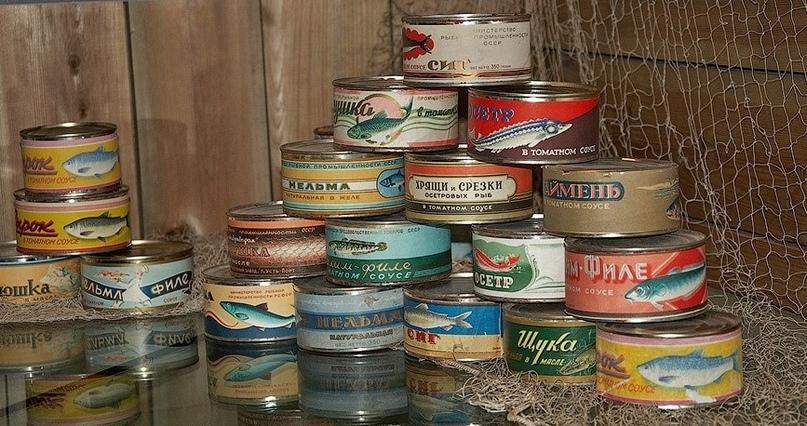 Как граждане СССР искали клад в консервных банках, изображение №3