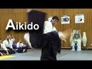 Aikido Tsuki Kokyu ho & Kokyu nage - Shirakawa Ryuji shihan